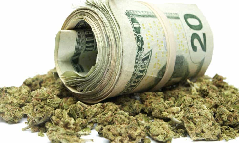 How to Build Wealth with Weed